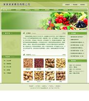 帝国绿色健康食品企业模板